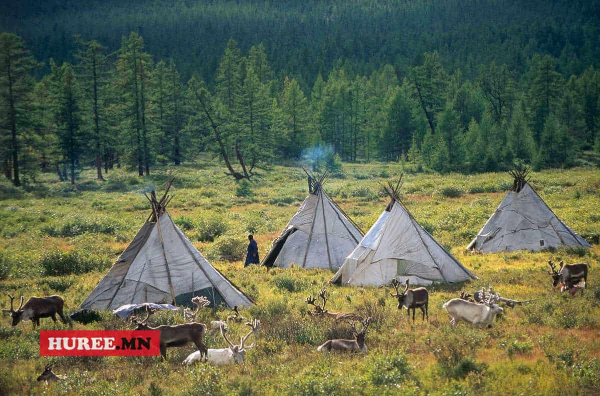 TSAATAN CAMP, RED TAIGA, TSAGANNUR REGION, KHOVSGOL PROVINCE, MONGOLIA